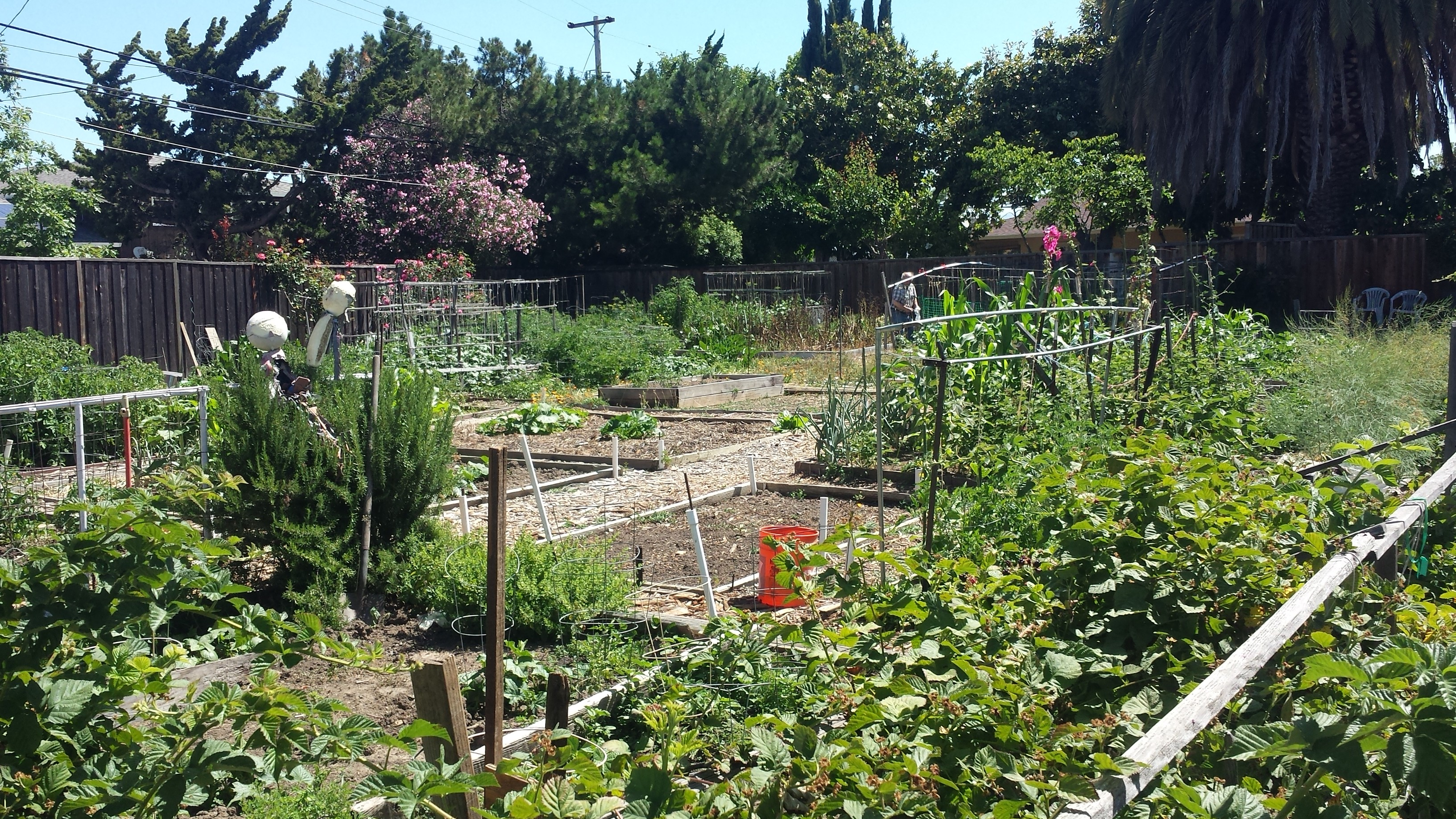 Existing Neighborhood Garden